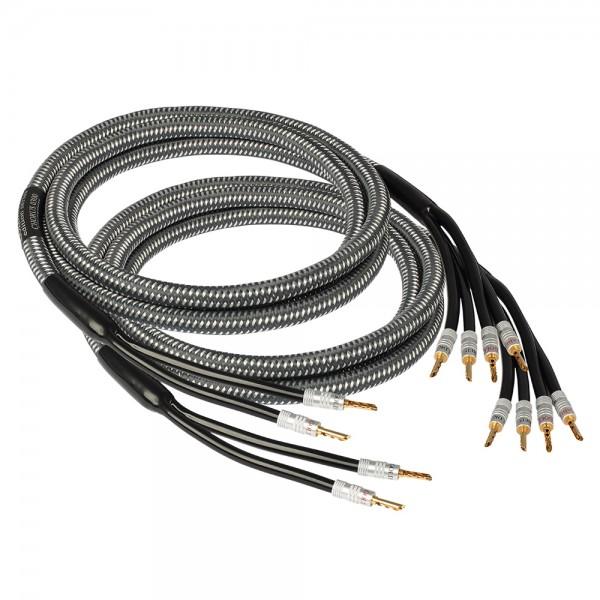 Edition CHORUS Bi-Wire Meterware
